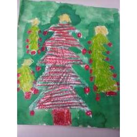 Kerstboom wasco en ecoline